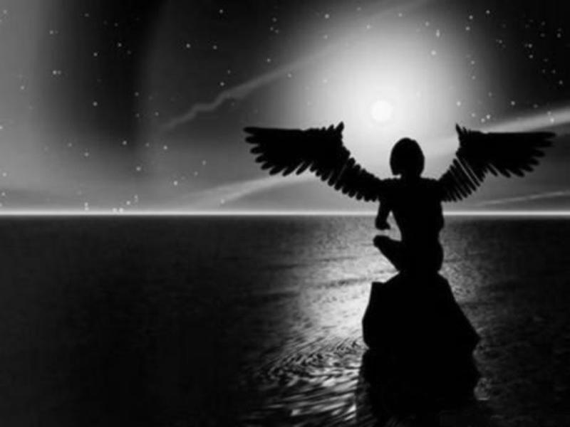anjel, noc8411579_large